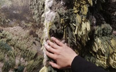 L'arte diAlexandra Kehayoglou da toccare con mano